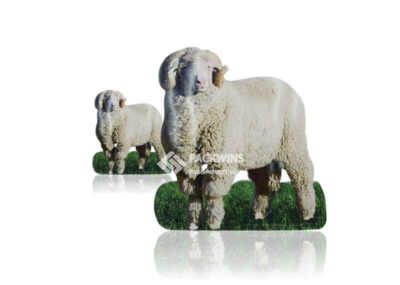 To Promote The Sale Of Wool Cardboard Cut Outs